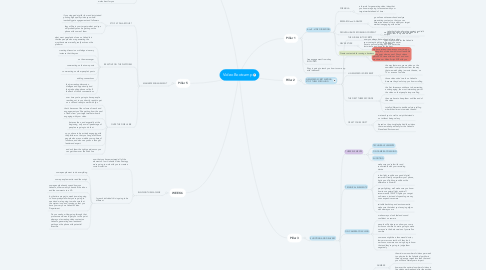 Mind Map: Video Bootcamp