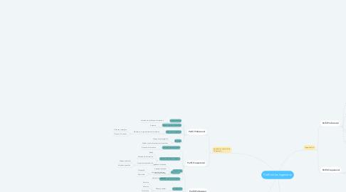 Mind Map: Perfil de los Ingenieros