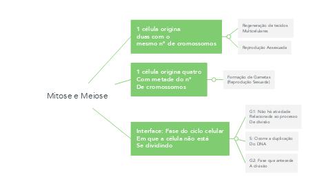 Mind Map: Mitose e Meiose