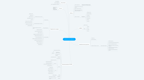 Mind Map: MANUFACTURA ESBELTA
