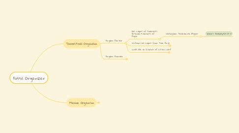 Mind Map: Fossil Organizer