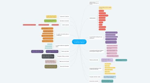 Mind Map: CONTABILIZACIÓN DE MATERIAS PRIMAS