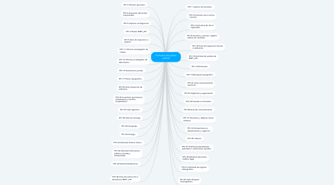 Mind Map: Formatos de policia judicial
