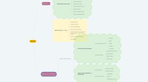 Mind Map: ANEMIJE