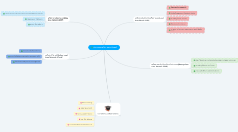 Mind Map: ประเภทของเครือข่ายคอมพิวเตอร์