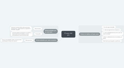 Mind Map: El aseo del pie