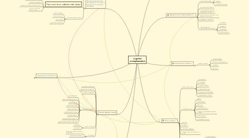 Mind Map: Cognitive conzeptualization