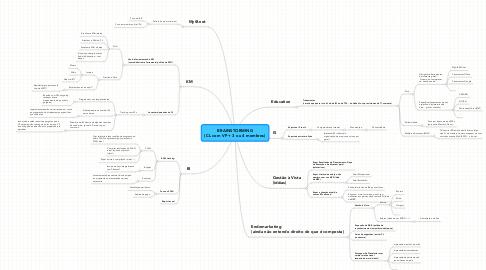 Mind Map: BRAINSTORMING (CL com VP + 3 ou 4 membros)