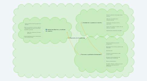 Mind Map: Momentos de la ejecución