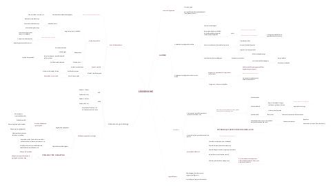 Mind Map: LES SENIORS