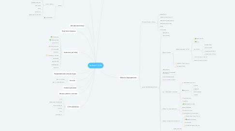Mind Map: Выбор-С (b2b)