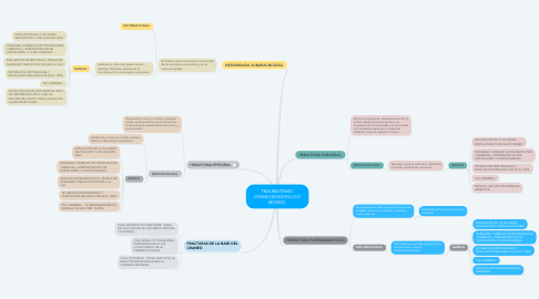 Mind Map: TRAUMATISMO CRANEOENCEFALICO SEVERO.