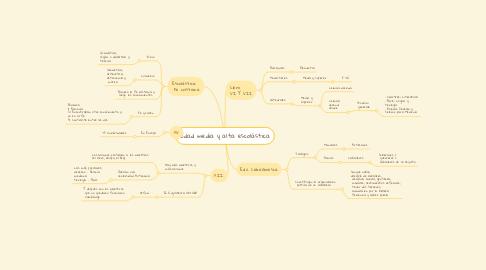 Mind Map: Edad media y alta escolástica