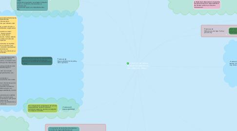 """Mind Map: ESTATUTO DE ROMA """"PRINCIPIOS GENERALES DEL DERECHO PENAL"""""""