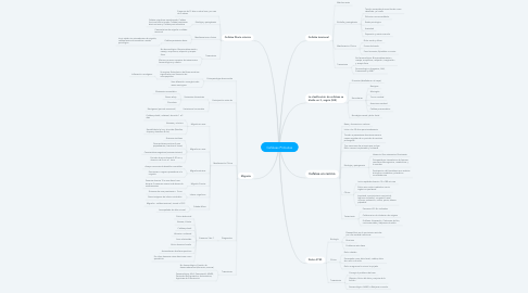 Mind Map: Cefaleas Primarias