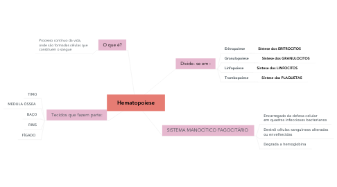 Mind Map: Hematopoiese