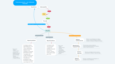 Mind Map: Funcionamento  da Glândula Tireoide