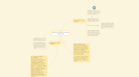 Mind Map: MARIELA FERRER-el correo electrónico