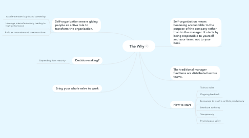 Mind Map: The Why