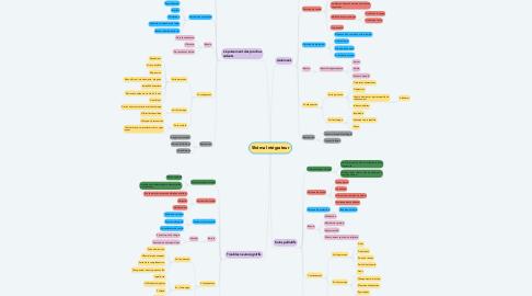 Mind Map: Shéma Intégrateur