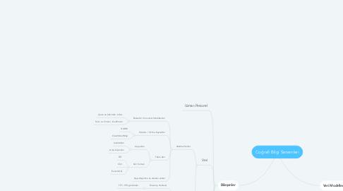 Mind Map: Coğrafi Bilgi Sistemleri