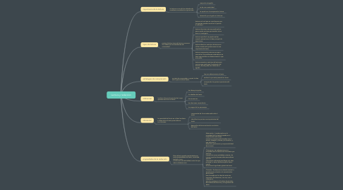 Mind Map: Lectura y redaccion