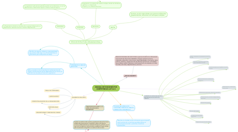 Mind Map: MANUAL DE FUNCIONES POR COMPETENCIAS LAP S.A.S