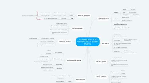 Mind Map: ENFERMEDADES POR ARTRÓPODOS DE INTERÉS MEDICO