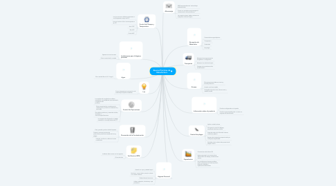 Mind Map: Buenas Prácticas de Manufactura