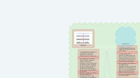 Mind Map: LAS CONSECUENCIAS DE LA METILACION Y DEMETILACION DEL ADN Y ARN