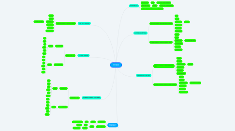 Mind Map: VERBE