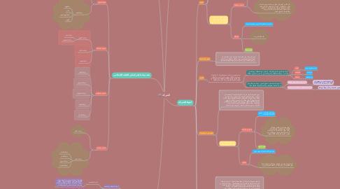 Mind Map: الشركة