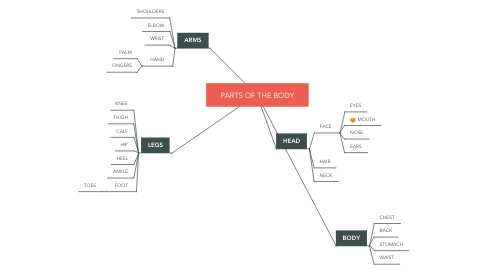 Mind Map: PARTS OF THE BODY