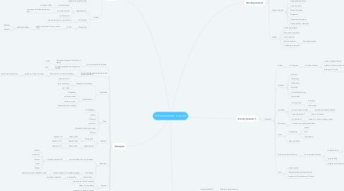 Mind Map: El Renacimiento: la prosa