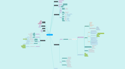 Mind Map: Adultez Temprana