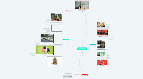 Mind Map: Change hiking experience for pet owners with gaming