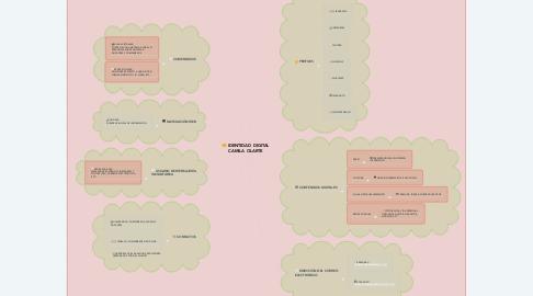 Mind Map: IDENTIDAD DIGITAL CAMILA OLARTE