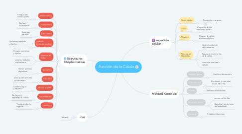 Mind Map: Función de la Célula