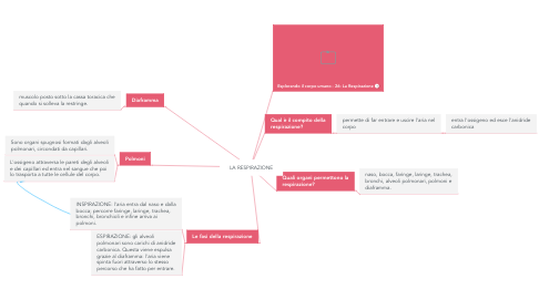 Mind Map: LA RESPIRAZIONE
