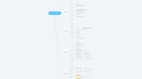 Mind Map: ЗАПУСК PLATINA 11