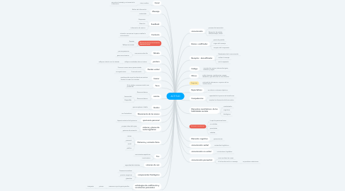 Mind Map: ACTITUD