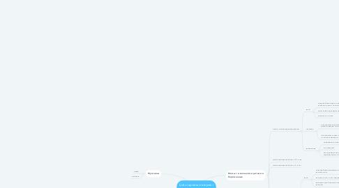Mind Map: ЦА стартапа интернет магазина