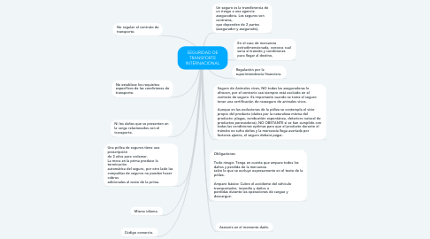 Mind Map: SEGURIDAD DE TRANSPORTE INTERNACIONAL