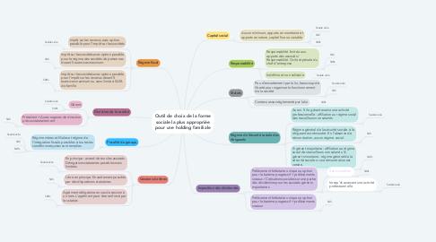 Mind Map: Outil de choix de la forme sociale la plus appropriée pour une holding familiale