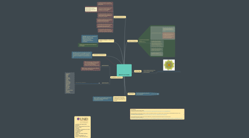 Mind Map: PROYECTO ALFA TUNING