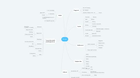 Mind Map: Borger