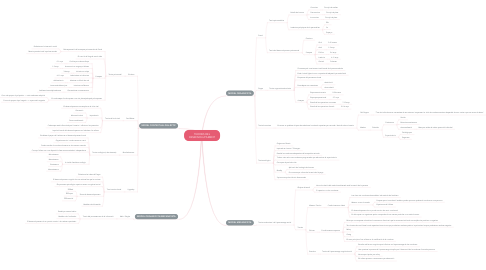 Mind Map: TEORIES DEL DESENVOLUPAMENT