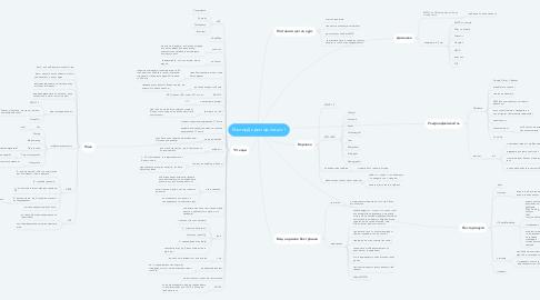 Mind Map: Мастер Директор лекція 1
