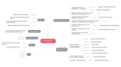 Mind Map: Promo DUT GLT 2019 - 29 diplômés