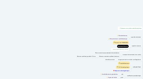 Mind Map: Densité